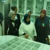 Türkiye'nin ilk Fitoterapi Merkezi Bezmialem'de