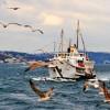 İstanbul ve yurtta hava durumu