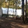 Belgrad Ormanına kumar çadırı kurdular!
