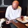 Kedi kahvaltıya ortak oldu