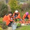 İBB'nin bahçıvanlık kursu başlıyor