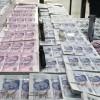 Kalpazanlar sahte paralarla yakalandı