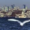 İstanbul'u bu hale getirenler utansın!