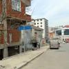 Pendik'te 'Zeytin Dalı Caddesi'