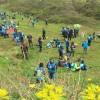 Beykozlu minik öğrenciler Yeşil Okul Projesi' ile fidan dikti